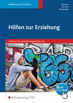 Hilfen zur Erziehung. Schülerband - Hammer, Richard; Hermsen, Thomas; Macsenaere, Michael