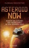 Asteroid Now (eBook, ePUB)