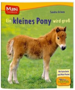 Ein kleines Pony wird groß (Mängelexemplar)