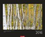 Poesie der Bäume 2016