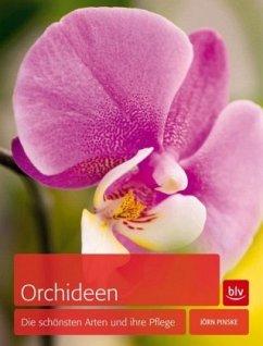Orchideen (Mängelexemplar) - Pinske, Jörn