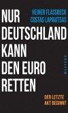 Nur Deutschland kann den Euro retten (eBook, ePUB)
