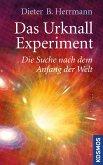 Das Urknall-Experiment (eBook, ePUB)