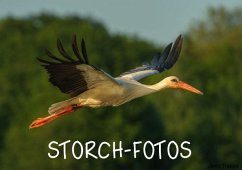 Storch-Fotos (Tischaufsteller DIN A5 quer)