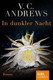 In dunkler Nacht (eBook, ePUB)