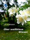 Über weißblaue Wiesen (eBook, ePUB)