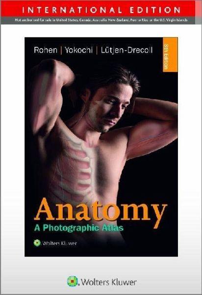 Color Atlas of Anatomy - international edition von Johannes W. Rohen ...