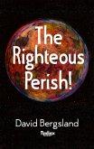 The Righteous Perish (eBook, ePUB)