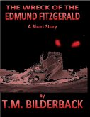 The Wreck Of The Edmund Fitzgerald - A Short Story (eBook, ePUB)