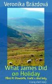 What James Did on Holiday (The Adventures of James, Martin, and Rose, #1) (eBook, ePUB)