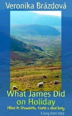 What James Did on Holiday (The Adventures of James, Martin, and Rose, #1) (eBook, ePUB) - Brazdova, Veronika