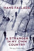 A Stranger in My Own Country (eBook, ePUB)