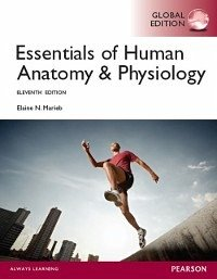 Elaine N Marieb Human Anatomy And Physiology Pdf