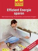 Effizient Energie sparen - Profiwissen für Heimwerker (eBook, ePUB)