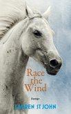 Race the Wind / One Dollar Horse Bd.2 (eBook, ePUB)