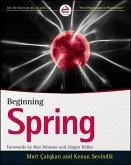 Beginning Spring (eBook, ePUB)