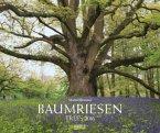 Baumriesen 2016 PhotoArt Kalender