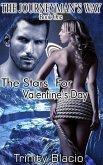 The Stars For Valentine's Day (The Journeyman's Way, #1) (eBook, ePUB)