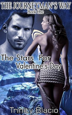 The Stars For Valentine's Day (The Journeyman's Way, #1) (eBook, ePUB) - Blacio, Trinity