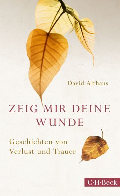 Zeig mir deine Wunde (eBook, ePUB) - Althaus, David