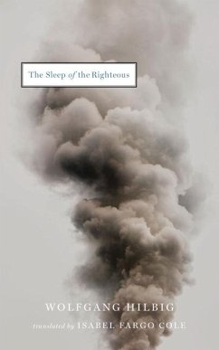 The Sleep of the Righteous - Hilbig, Wolfgang