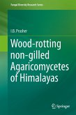 Wood-rotting non-gilled Agaricomycetes of Himalayas