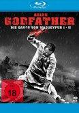 Asian Godfather - Die Gangs von Wasseypur