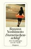 Dornröschenschlaf (eBook, ePUB)