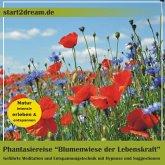 Blumenwiese der Lebenskraft (MP3-Download)