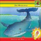 Die Walschule (MP3-Download)
