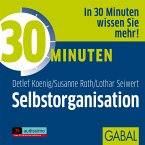 30 Minuten Selbstorganisation (MP3-Download)