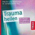 Trauma heilen (MP3-Download)