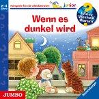 Wenn es dunkel wird / Wieso? Weshalb? Warum? Junior Bd.28 (MP3-Download)