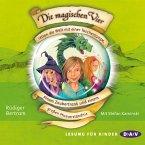 Die magischen Vier retten die Welt mit einer Taschenlampe, einem Zaubertrank und einem großen Missverständnis / Die magischen Vier Bd.1 (MP3-Download)