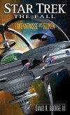 Erkenntnisse aus Ruinen / Star Trek - The Fall Bd.1 (eBook, ePUB)
