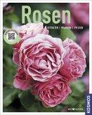 Rosen (Mängelexemplar)