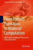 From Pattern Formation to Material Computation