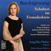 Nachtgesang-Schubert Im Freundeskreis