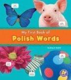 Polish Words