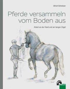 Pferde versammeln vom Boden aus - Schnitzer, Ulrich