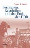 Fernsehen, Revolution und das Ende der DDR (eBook, PDF)