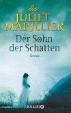 Der Sohn der Schatten / Sevenwaters Bd.2 (eBook, ePUB)