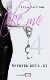 Take Me 4 - Grenzen der Lust (eBook, ePUB)