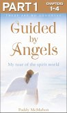 Guided By Angels: Part 1 of 3: There Are No Goodbyes, My Tour of the Spirit World (eBook, ePUB)