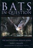 Bats in Question (eBook, ePUB)