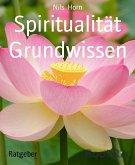 Spiritualität Grundwissen (eBook, ePUB)