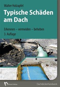 Typische Schäden am Dach - Holzapfel, Walter