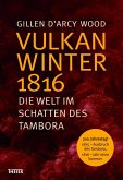 Vulkanwinter 1816 (eBook, PDF)