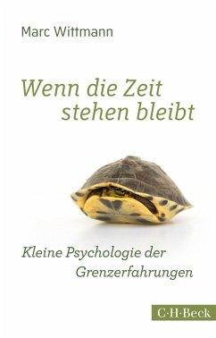 Wenn die Zeit stehen bleibt (eBook, ePUB) - Wittmann, Marc