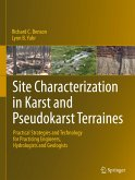 Site Characterization in Karst and Pseudokarst Terraines